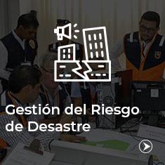 Gestion_Riesgo_Desastre