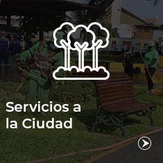 servicios_cuidad